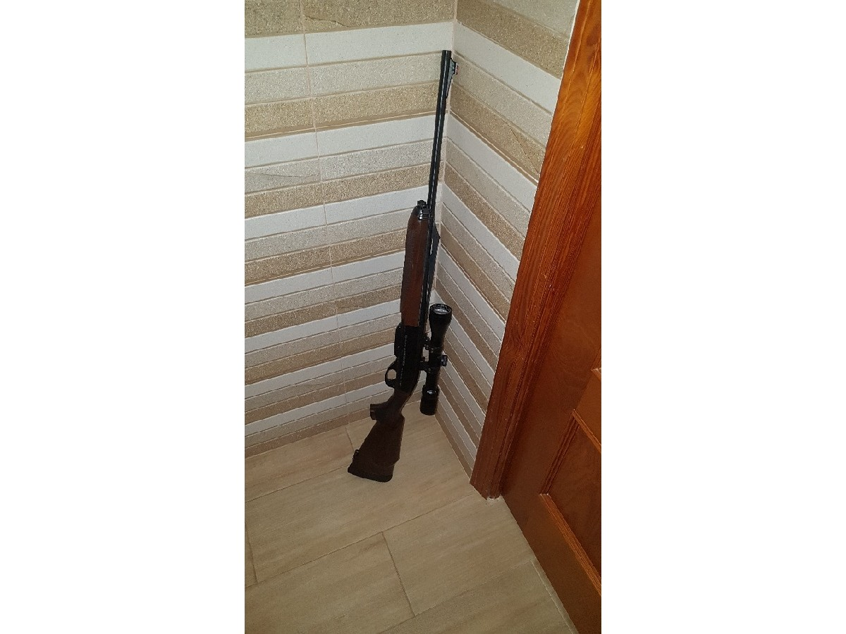 Rifle Remington 750 + visor Banner y monturas Apel